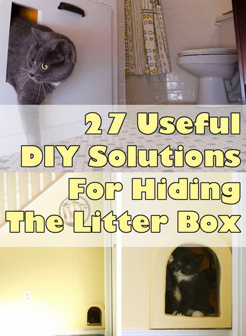 Hiding The Litter Box